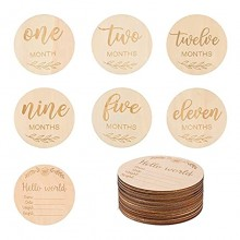 TOYANDONA 14pcs Wooden Baby Monthly Milestone Cards Baby Milestone Discs for Photo Props Baby Shower Gifts